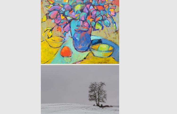Concursos artístics  per a metges