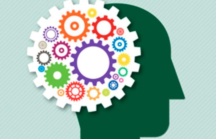 Taller del PPS d'intervenció en funcions cognitives