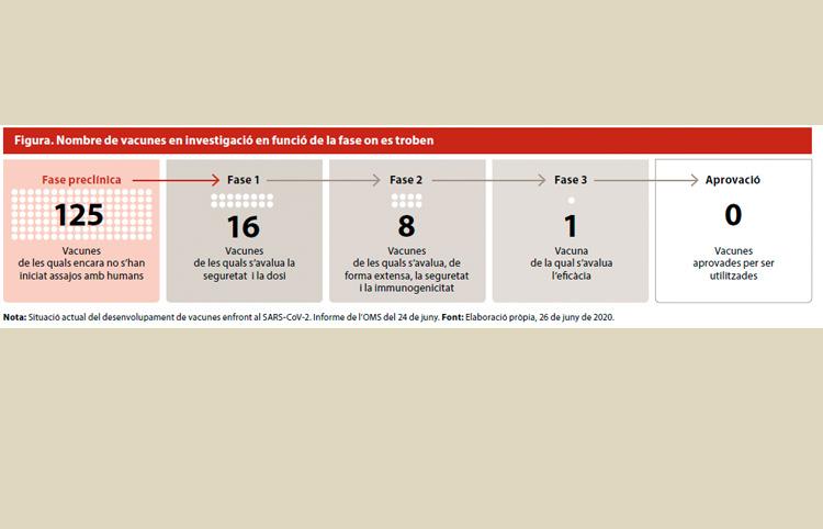 Nombre de vacunes en investigació en funció de la fase on es troben